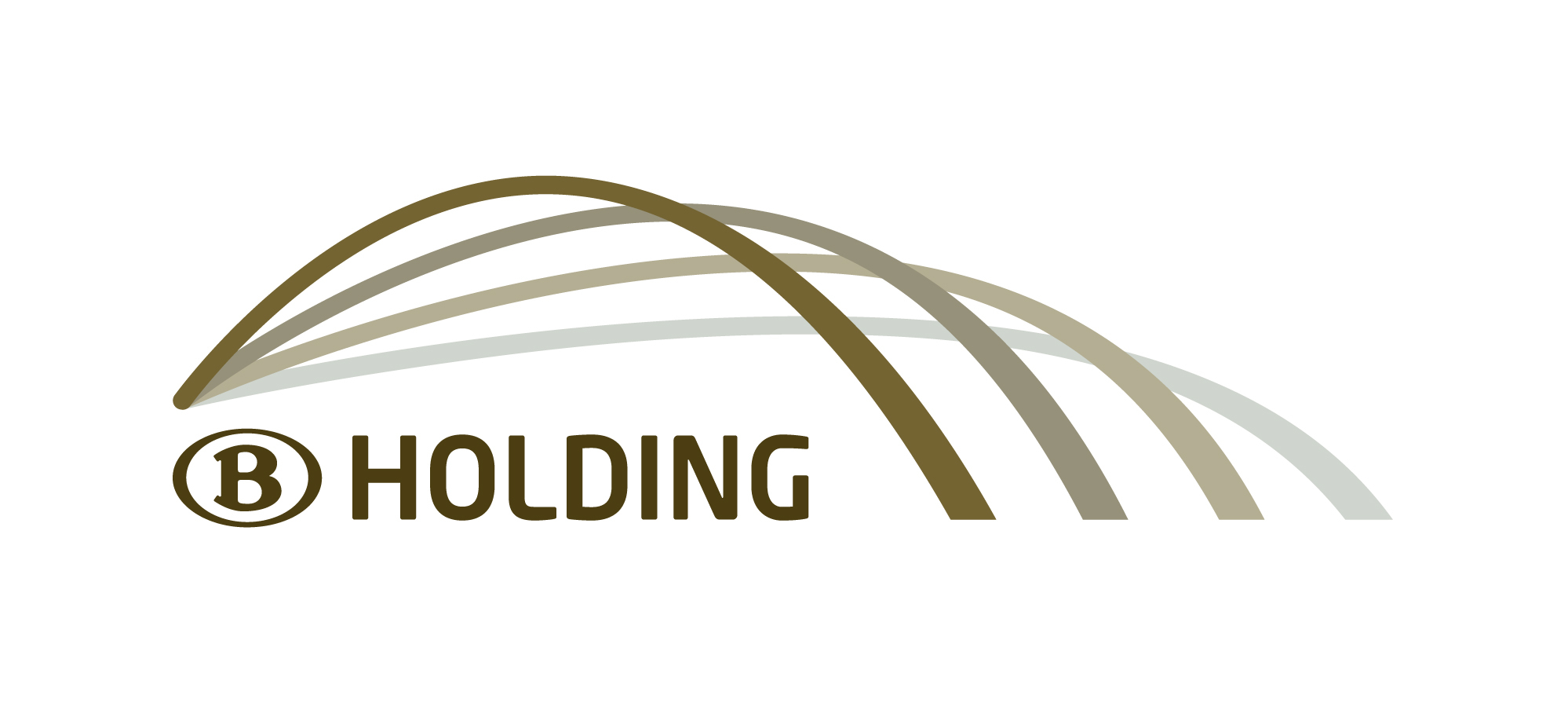 Logo NMBS Holding
